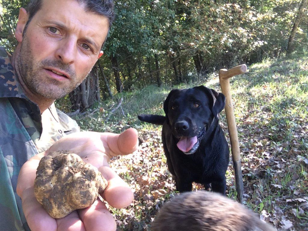 Alessandro di Siena Tartufi mostra il bel tartufo bianco appena trovato da Moka e Pepita durante truffle hunting