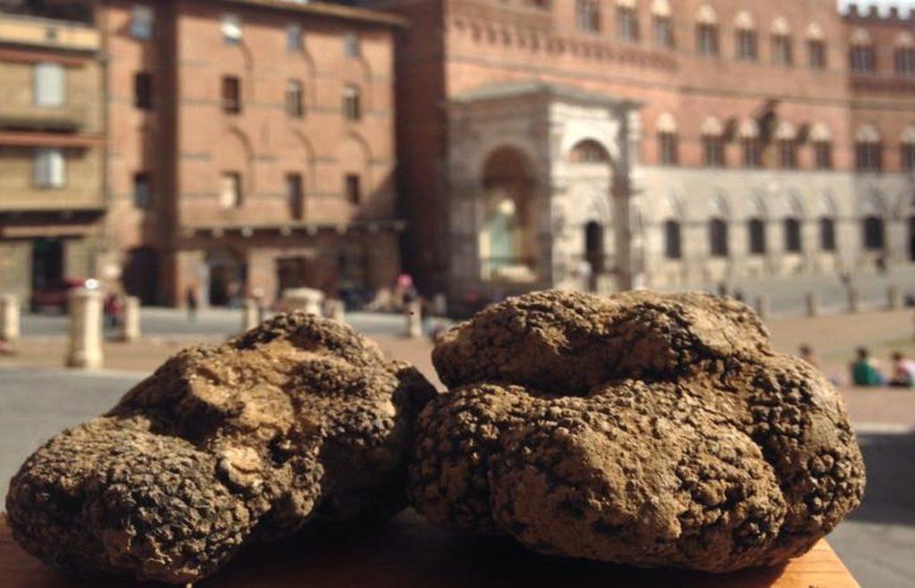 Una delle piazze più belle del mondo con il principe della tavola: in una parola, Siena Tartufi - tuscan truffle experience