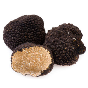 Fresh black summer truffle | Siena Tartufi