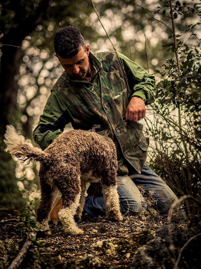 Alessandro di Siena Tartufi nel bosco con Moka durante un truffle hunting - foto di Marco Cheli