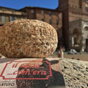 Pecorino cheese with truffles | Siena Tartufi